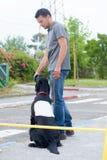 Χειριστής σκυλιών στην εργασία στοκ φωτογραφίες με δικαίωμα ελεύθερης χρήσης