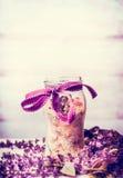 Χειροποίητα βοτανικά άλατα λουτρών στο βάζο με την κορδέλλα και τα φρέσκα χορτάρια Στοκ φωτογραφία με δικαίωμα ελεύθερης χρήσης