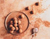 Χειροποίητη τρούφα σοκολάτας σε ένα πιάτο Σκοτεινές καραμέλες σοκολάτας στη σκόνη κακάου σε ένα σκοτεινό καφετί υπόβαθρο r στοκ φωτογραφία με δικαίωμα ελεύθερης χρήσης