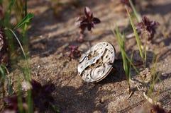χειροποίητος Δαχτυλίδι με τα εσωτερικά του ρολογιού στο έδαφος Στοκ Εικόνες