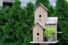 Χειροποίητο ξύλινο birdhouse στο πάρκο Στοκ Φωτογραφίες