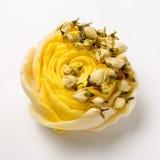 Χειροποίητο σαπούνι ως τριαντάφυλλα, λουλούδια, aromatherapy, SPA Στοκ εικόνες με δικαίωμα ελεύθερης χρήσης
