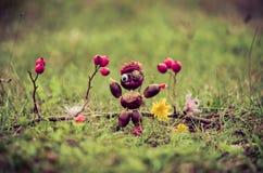 Χειροτεχνία κάστανων φθινοπώρου Στοκ φωτογραφίες με δικαίωμα ελεύθερης χρήσης