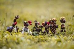 Χειροτεχνία κάστανων φθινοπώρου Στοκ Εικόνες