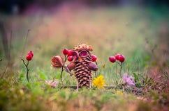 Χειροτεχνία κάστανων φθινοπώρου Στοκ φωτογραφία με δικαίωμα ελεύθερης χρήσης