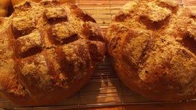 2 χειροτεχνικές φραντζόλες ψωμιού Στοκ Εικόνα
