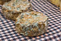 Χειροτεχνικό αγροτικό τυρί Στοκ Φωτογραφίες