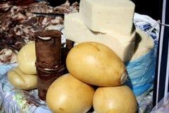 Χειροτεχνικό τυρί στο φλοιό έλατου Στοκ Εικόνα