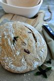 Χειροτεχνικό ψωμί μαγιάς με το βασιλικό και τις ελιές Στοκ εικόνες με δικαίωμα ελεύθερης χρήσης