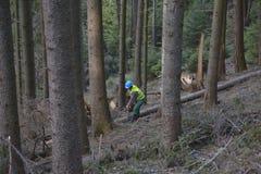 Χειρούργος δέντρων δενδροκόμων που φορά το προστατευτικό σκληρό καπέλο helmett που χρησιμοποιεί Στοκ Φωτογραφίες
