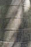 Χειρόγραφο κουδουνιών Στοκ Εικόνες
