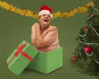Χειρότερο χριστουγεννιάτικο δώρο πάντα Στοκ φωτογραφίες με δικαίωμα ελεύθερης χρήσης