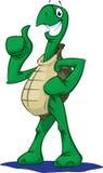χελώνα αντίχειρων Στοκ φωτογραφία με δικαίωμα ελεύθερης χρήσης