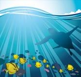χελώνα ομάδας ψαριών Ελεύθερη απεικόνιση δικαιώματος