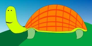 χελώνα σχεδίων κινούμενω&nu Στοκ φωτογραφίες με δικαίωμα ελεύθερης χρήσης