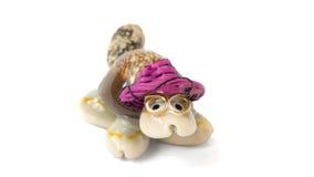 χελώνα των κοχυλιών θάλασσας σε ένα καπέλο Στοκ εικόνες με δικαίωμα ελεύθερης χρήσης