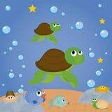 χελώνες Στοκ εικόνα με δικαίωμα ελεύθερης χρήσης