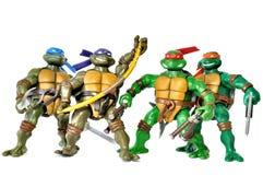 Χελώνες Ninja στοκ φωτογραφία με δικαίωμα ελεύθερης χρήσης