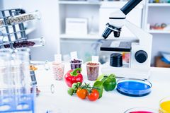 Χημικό εργαστήριο της προσφοράς τροφίμων Τα τρόφιμα στο εργαστήριο, DNA τροποποιούν ΓΤΟ τροποποιημένης γενετικά τρόφιμα στο εργασ στοκ φωτογραφία με δικαίωμα ελεύθερης χρήσης