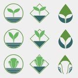 Χημικό ελεύθερο φυτικό λογότυπο Στοκ φωτογραφία με δικαίωμα ελεύθερης χρήσης