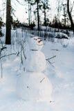 Χιονάνθρωποι στα υψηλά βουνά Tatras Στοκ Εικόνα