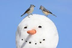 χιονάνθρωπος δύο πουλιών Στοκ Εικόνα