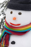 χιονάνθρωπος πορτρέτου Στοκ Εικόνα