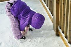 χιονιά Στοκ Φωτογραφίες