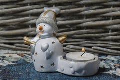 χιονιά Στοκ Φωτογραφία