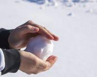 χιονιά Στοκ Εικόνες