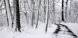 Χειμερινή πορεία Στοκ Φωτογραφία