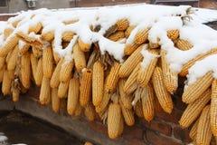 Χιονισμένα δημητριακά που κρεμούν στη στέγη στην επαρχία Στοκ Φωτογραφίες