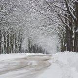 Χιονισμένη οδός πόλεων χειμώνας εποχής τοπίων ωρών καλυμμένα δέντρα χιονιού Στοκ φωτογραφίες με δικαίωμα ελεύθερης χρήσης