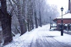 Χιονισμένη οδός στα χειμερινά φανάρια και τα δέντρα Στοκ Εικόνες