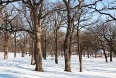 Χιονισμένη περιοχή πικ-νίκ στο πάρκο Στοκ φωτογραφία με δικαίωμα ελεύθερης χρήσης