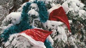 Χιονισμένοι κλάδοι Χριστουγέννων σε ένα δάσος όπου υπάρχουν καλύμματα των διακοσμήσεων Άγιου Βασίλη και χριστουγεννιάτικων δέντρω απόθεμα βίντεο