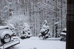 Χιονισμένος μέσα Στοκ Εικόνα
