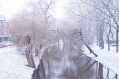 Χιονισμένος ποταμός ένα δέντρο της ιτιάς στο χιόνι Στοκ εικόνα με δικαίωμα ελεύθερης χρήσης