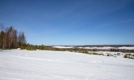 Χιονισμένος τομέας κοντά στο δάσος και το μπλε ουρανό Χειμώνας Στοκ Εικόνα