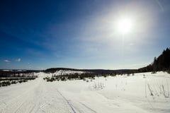 Χιονισμένος τομέας κοντά στο δάσος και το μπλε ουρανό Χειμώνας τονισμένος Στοκ Φωτογραφίες