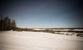 Χιονισμένος τομέας κοντά στο δάσος και το μπλε ουρανό Χειμώνας τονισμένος Στοκ Εικόνες