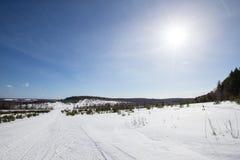 Χιονισμένος τομέας κοντά στο δάσος και το μπλε ουρανό Χειμώνας Στοκ φωτογραφία με δικαίωμα ελεύθερης χρήσης