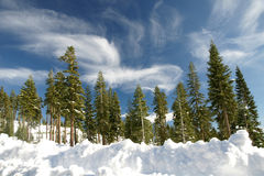 Χιονισμένος τοποθετήστε Shasta, Siskiyou κομητεία, Καλιφόρνια Στοκ Φωτογραφίες