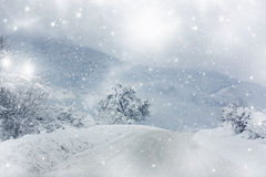 Χιονισμένος χειμερινός δρόμος Στοκ Εικόνα