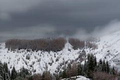 Χιονισμένο βουνό Ile Alatau τη νεφελώδη ημέρα στοκ φωτογραφίες με δικαίωμα ελεύθερης χρήσης