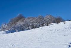 Χιονισμένο δάσος, στο πρώτο πλάνο ένα χιονώδες λιβάδι, στο κλίμα - ένας μπλε ουρανός Lago-Naki, η κύρια καυκάσια κορυφογραμμή, Ρ στοκ φωτογραφίες