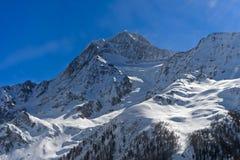 Χιονισμένο μέγιστο Aletschhorn Στοκ Εικόνες