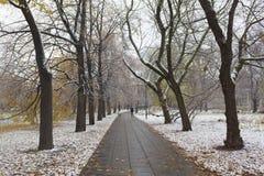 Χιονισμένο πάρκο στη Βαρσοβία Στοκ φωτογραφία με δικαίωμα ελεύθερης χρήσης