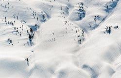 Χιονισμένο παρθένο βουνό με τα διεσπαρμένα δέντρα στοκ εικόνα