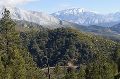 Χιονισμένο SAN Bernardino Mountain Στοκ φωτογραφίες με δικαίωμα ελεύθερης χρήσης